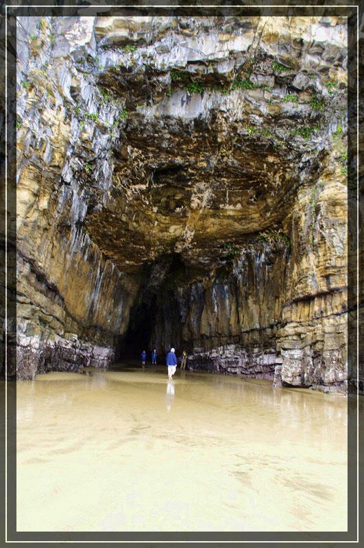 Man Cave Waipapa : Kaka point te anau