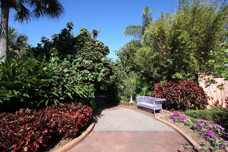 Botanical Garden Florida Pinellas County Florida Botanical Gardens Largo Florida Florida