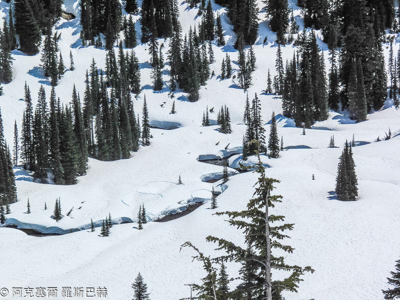 Barfuss durch den schnee - 2 10